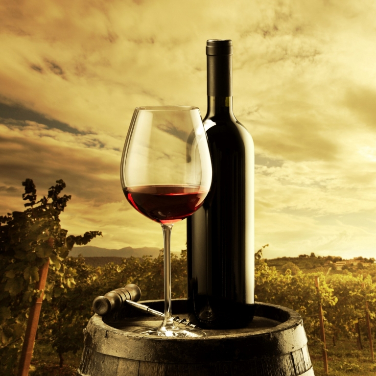 who we are winetourer